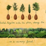 biodegradable-burial-pod-memory-forest-capsula-mundi-8